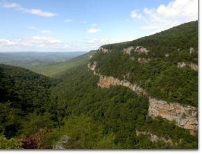 Cloudland Canyon